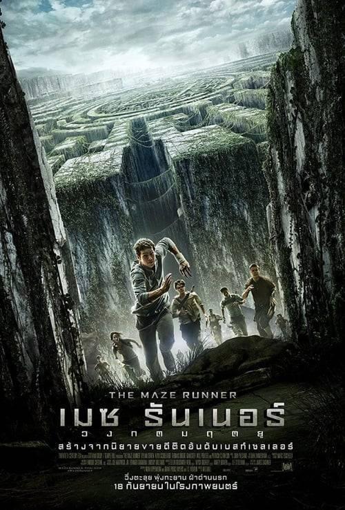 ดูหนังออนไลน์ฟรี The Maze Runner 1 (2014) เมซ รันเนอร์ 1 : วงกตมฤตยู