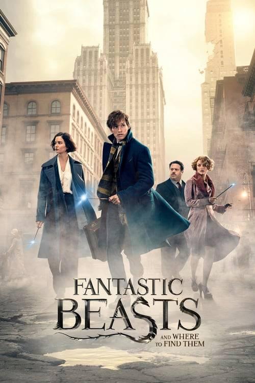 ดูหนังออนไลน์ฟรี Fantastic Beasts and Where to Find Them (2016) สัตว์มหัศจรรย์และถิ่นที่อยู่
