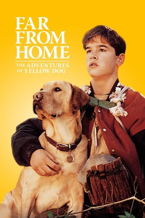 ดูหนังออนไลน์ฟรี Far from Home: The Adventures of Yellow Dog (1995) เพื่อนรักแสนรู้